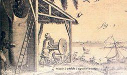 Les moulins de la Martinique