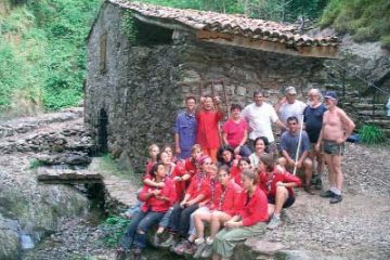 laurede consolidation