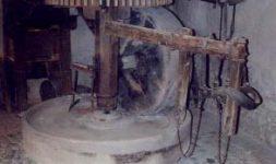 Une initiative à saluer : Le village de Mittelbergheim, dans le Bas Rhin conserve un moulin à huile autrefois actionné par un cheval