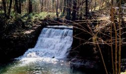 La Loi du 30 décembre 2006 et les Moulins à eau