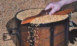Les mesures à grains du XVIIIème siècle