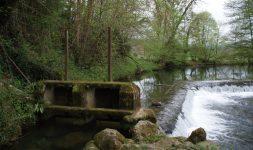 A propos de la « Survivance Administrative » des droits d'eau des moulins, un repli stratégique du ministère