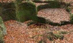 Les fouilles préventives, un outil pour mieux connaître l'histoire des moulins ?
