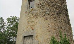 Restauration du Moulin à vent du Chêne