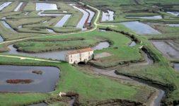 Les moulins à marée du bassin de Seudre