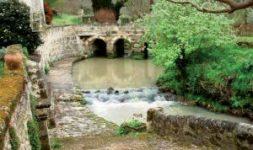 Rivières et moulins à eau : enjeux et perspectives