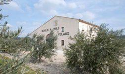 Le Moulin à huile de Velaux (Bouches-du-Rhône)