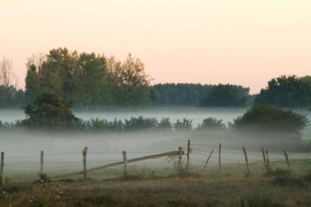 brume autour de Boisard 2015