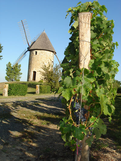 Moulin des Grandes Vignes