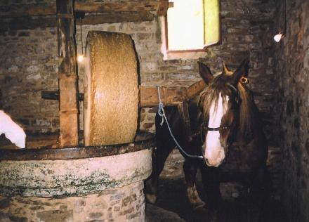 Moulin à huile Lou Truelh