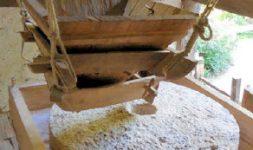 Police des moulins sous l'ancien régime. Les astuces des « meuniers fripons »
