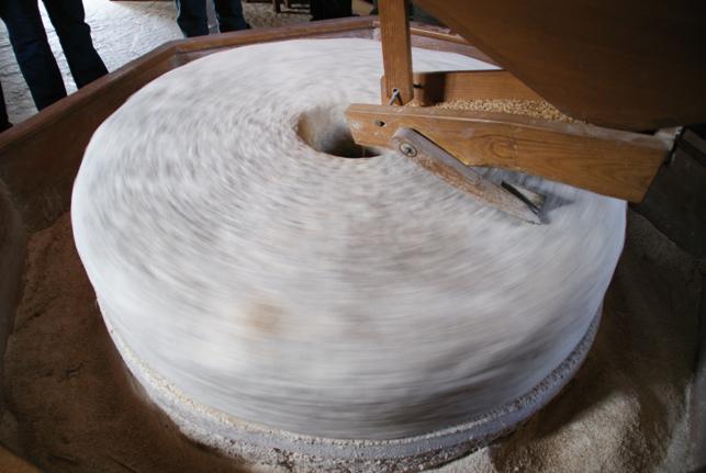 La meule du moulin de Saoussas à Loudenvielle
