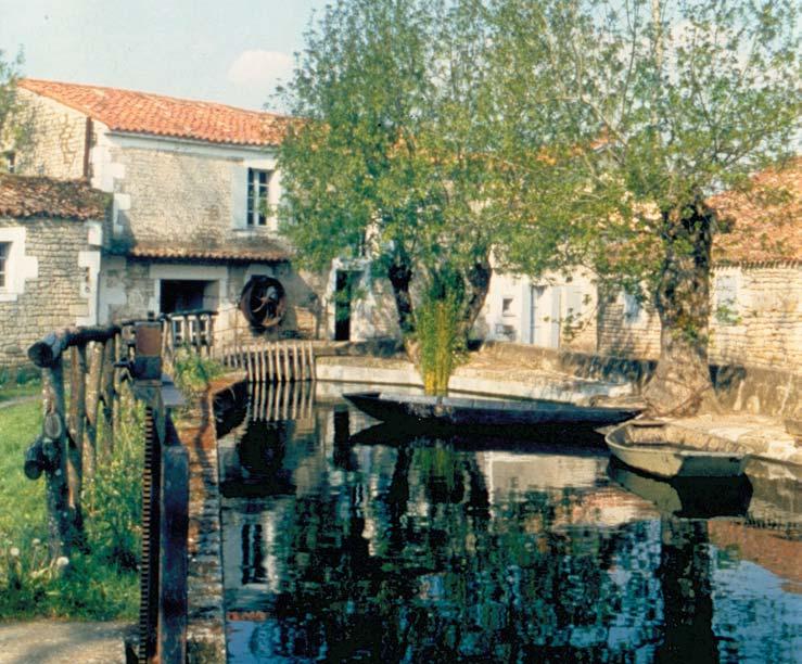 le moulin de Nieul sur l'Autise - cliché Maison de la Meunerie