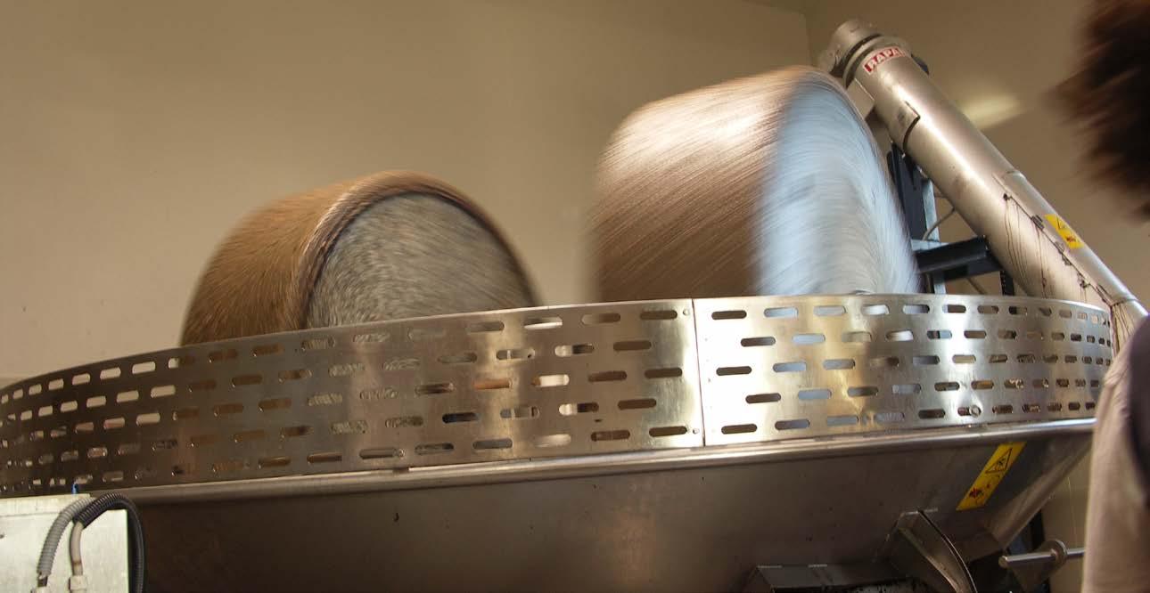 Les meules en granit du moulin neuf - Photo Archives de la Coopérative oléicole de Velaux.