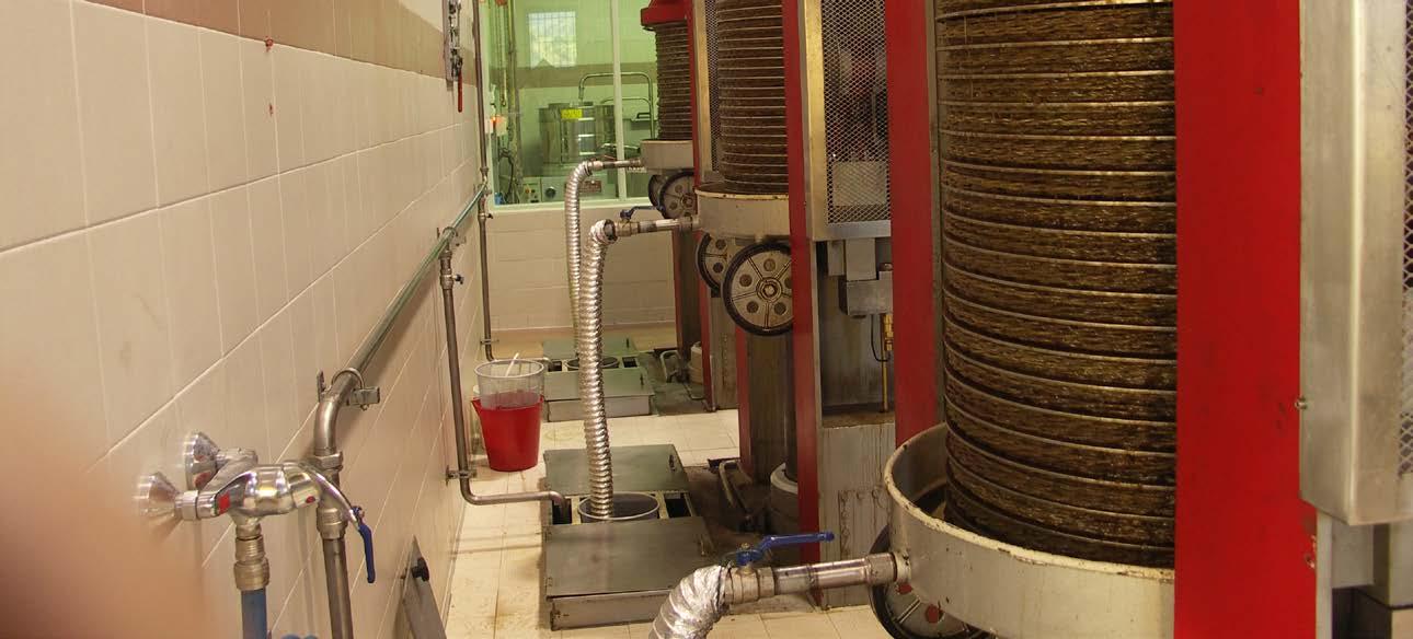 Les presses du moulin neuf - Photo Archives de la Coopérative oléicole de Velaux.