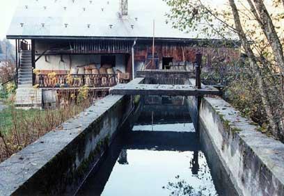 Moulin Rey