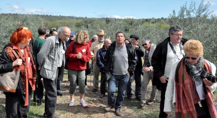 Le Moulin d'Ussel, Visite dans l'oliveraie avec Monsieur André Horard, propriétaire. Photo JL ZERR