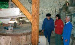 Histoire d'un petit moulin landais